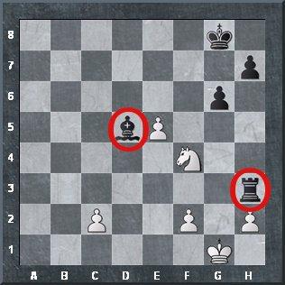 chess knight