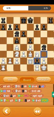 Check but not Checkmated