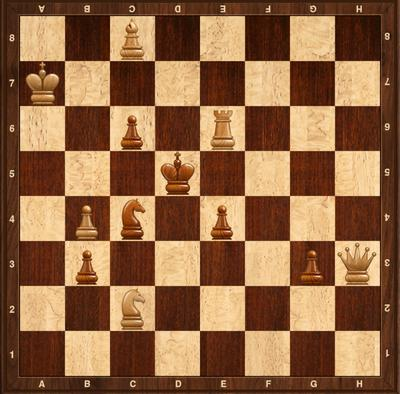 Chess Beginner Puzzle