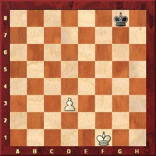 Chess Pawn - What can a Pawn do in Chess?