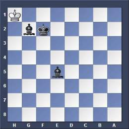 chess two bishops